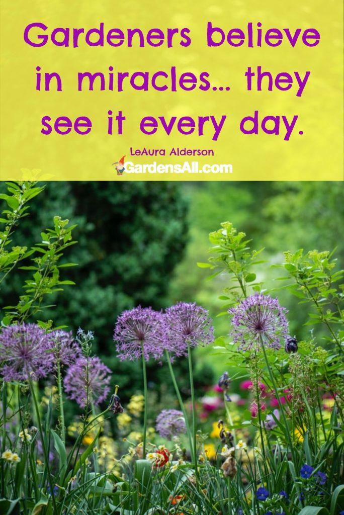 Gardeners believe in miracles... they see it every day. #GardeningTherapy #GardenQuote #GardenMeme #Garden #Gardening