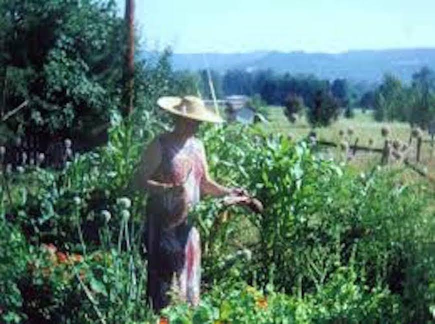 Ruth Stout, no till, deep mulch gardening. #FamousGardener #NakedGardener #NotillGarden #GardenMulching