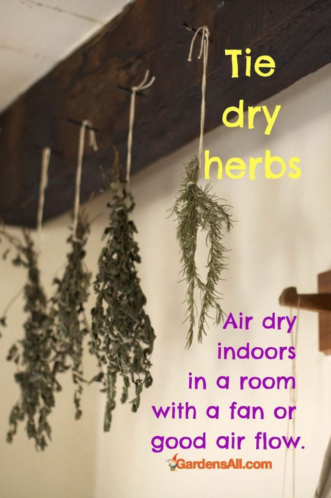 Traditional Tie Drying Method for Dehydrating Herbs. #DryingHerbs #DehydratingHerbs #GardensAll #HangHerbsToDry #Herbs #Tips