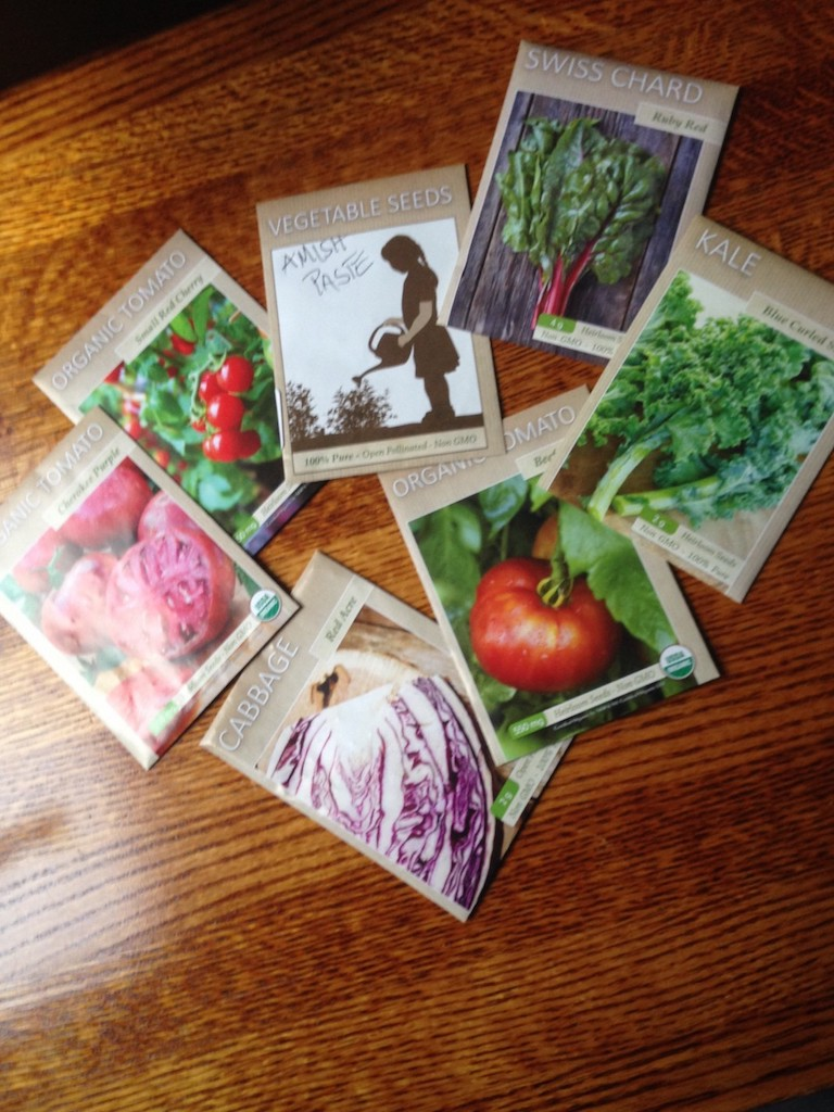 GARDEN SEEDS COMPANIES - Covid-19 Seed Company Updates + Best Garden Seed Companies, seed storage and what to order. #GardenSeeds #GardenSeedCompanies #WhereToOrderVegetableSeeds #GardensAll.com