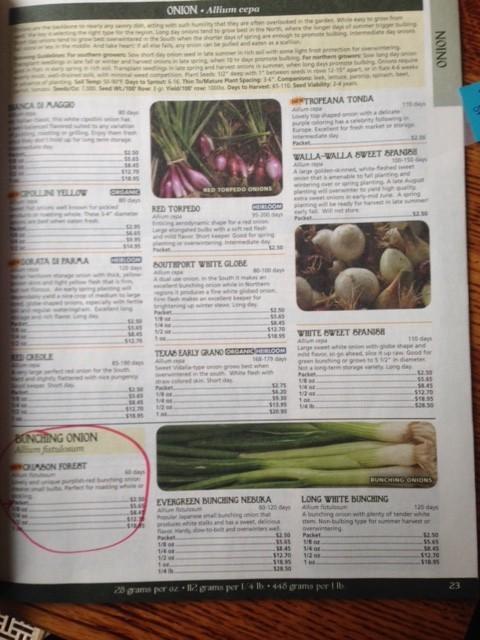 SEED CATALOG - Tagged, flagged and circled! #GardenSeedSuppliers #GardenSeeds#OrderingSeeds #SeedsCompanies #VegetableGardening #GardensAll.com