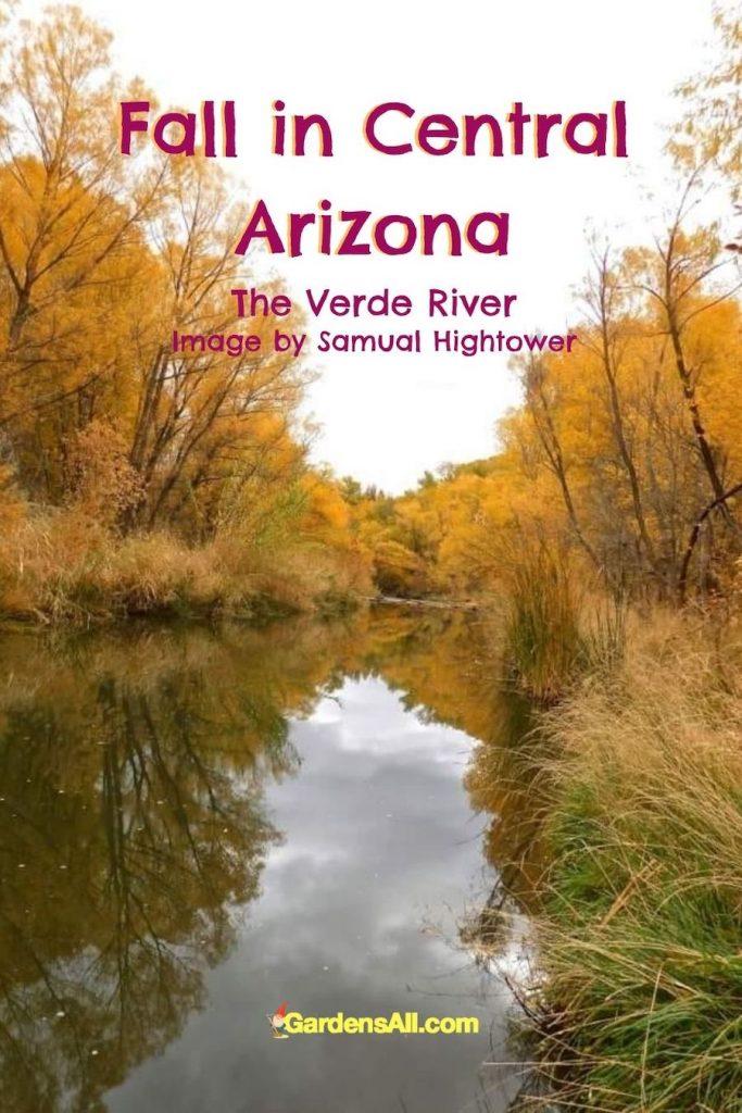 Fall in Central Arizona - The Verde River - photo by Samuel Hightower #FallPhotos #FallSeason #GardensAll #Shoot #Autumn #Photography