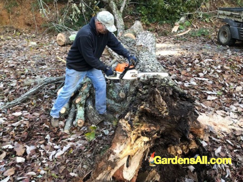 Stihl Chainsaw Review - Best Chainsaw. #BestChainsaw #StihlChainsawReview #GardensAll #ChainsawReview