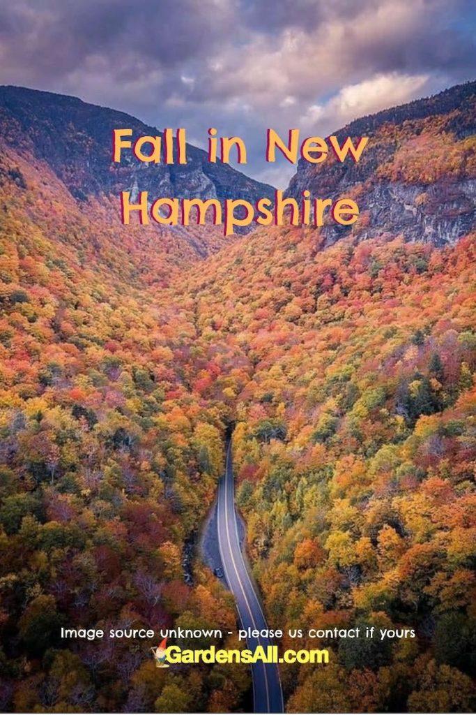 Fall Photos - Fall in New Hampshire Photo - Autumn Images #FallPhotos #FallInNewHampshire #AutumnImages #FallColors