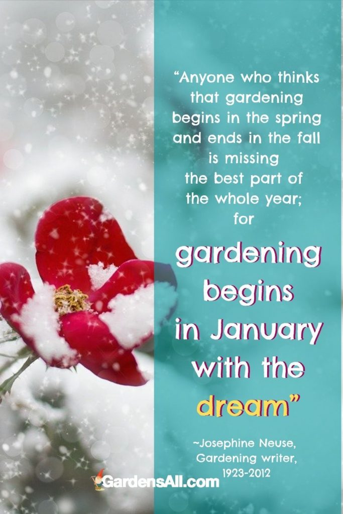 """POPULAR WINTER GARDENING QUOTE FOR GARDENERS: """"Anyone who thinks that gardening begins in the spring and ends in the fall is missing the best part of the whole year; for gardening begins in January with the dream"""" ~Josephine Neuse, US Gardening writer, 1923-2012 #FamousGardenQuote #PopularGardenMeme #GardeningQuotes #GardeningMemes #GardensAll #WinterGardenQuote #GardenDreamQuote"""
