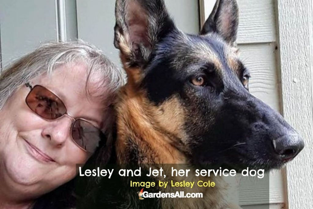 Lesley and Jet - image by Lesley Cole via GardensAll.com