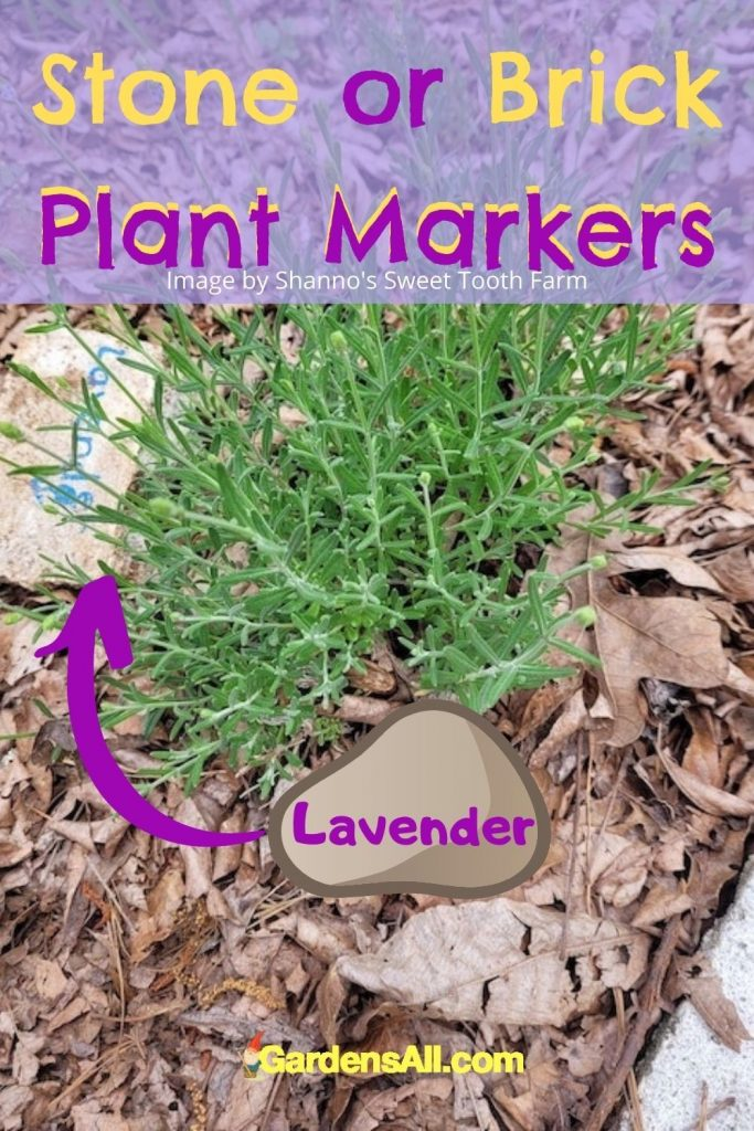 Stone or brick plant marker ideas - Shannons sweet tooth farm - GardensAll.com