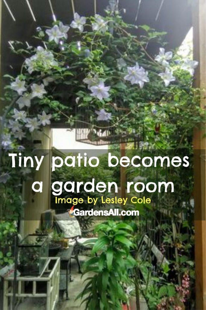 Transform a tiny patio into a garden room - image by Lesley Cole via GardensAll.com