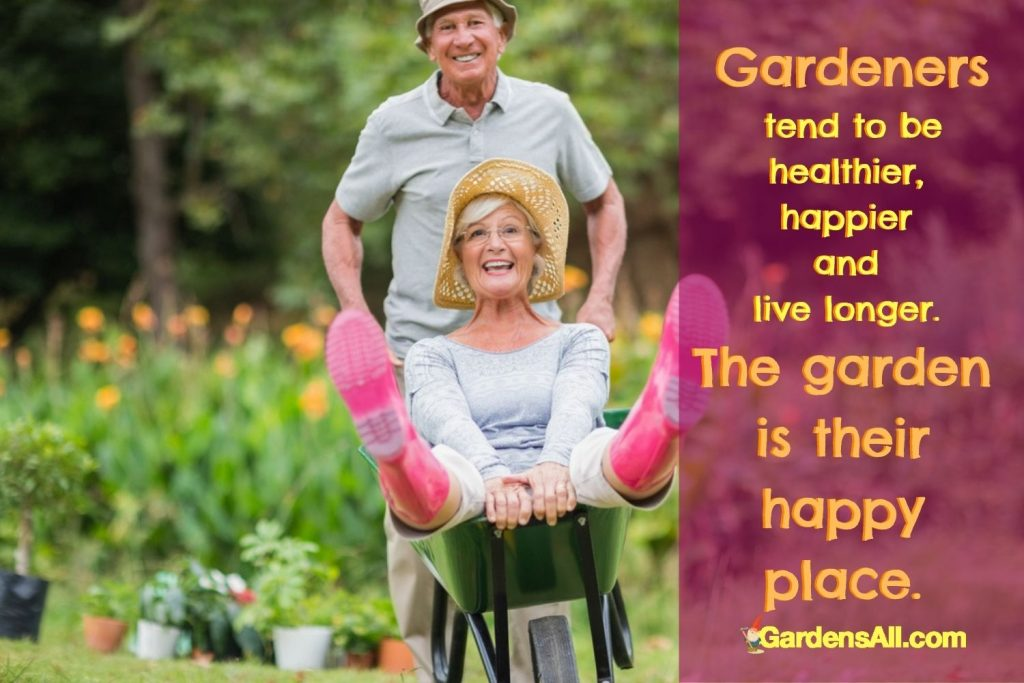Gardeners tend to be healthier, happier and live longer. The garden is their happy place. GardensAll.com