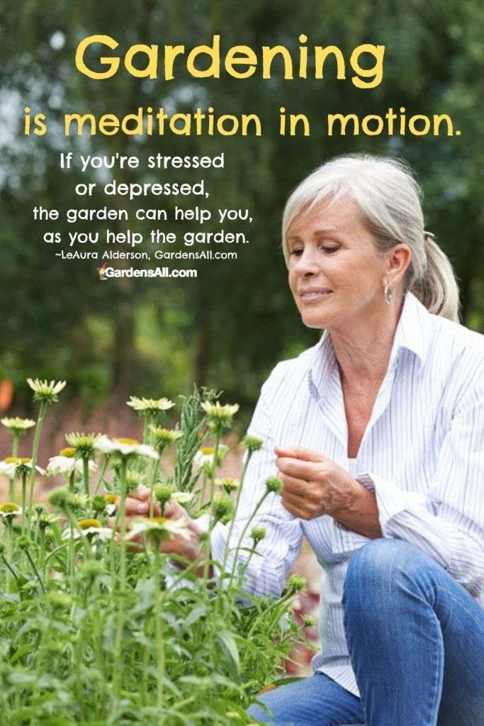 Gardening is meditation in motion. So if you're stressed or depressed, the garden can help you, as you help the garden.~LeAura Alderson, GardensAll.com
