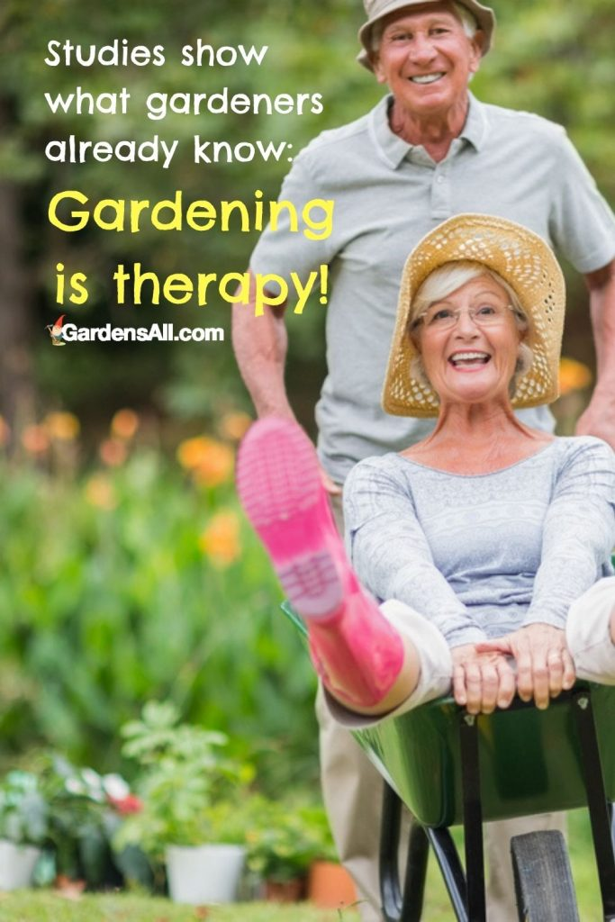 Studies show what gardeners already know: Gardening is therapy and helps alleviate stress, anxiety and depression while boosting immunity, health and happiness. GardensAll.com