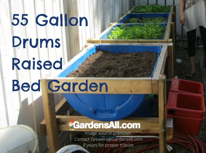 55 Gallon Drum Projects - Raised Garden Bed
